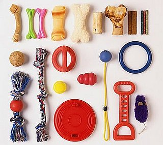 How Many Toys Does Your Pet Have?