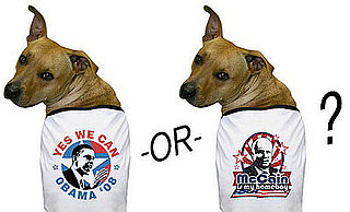 Are Your Pets Political?
