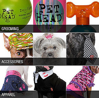 Bed Head Launches Pet Head
