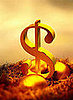 Does Your Employer Match 401(k) Contributions?