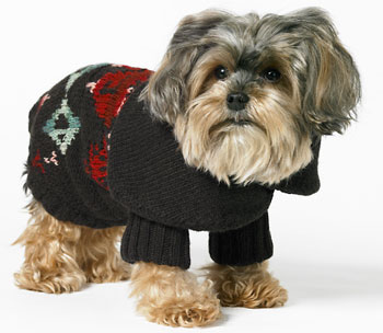 Online Sale Alert! Ralph Lauren For the Pup