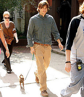 Does Ashton Kutcher Really Pee With His Dogs?