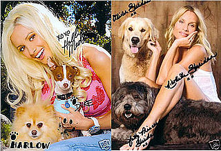 Milk-Bone eBay Celebrity Charity Auction Ends Saturday!