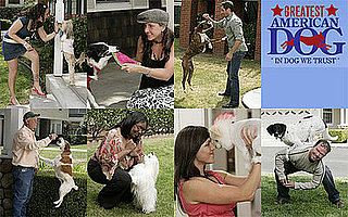 Greatest American Dog: Do You Have an Early Fave?