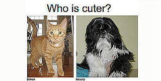 "Play ""Which Pet Is Cuter?""... and Win!"