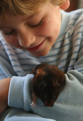 "Do Tell: Have You Owned ""Exotic Pets"" As a Child?"