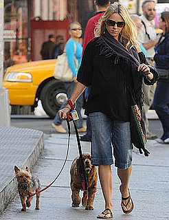 Naomi Watts Walks Her Dogs, Bob and Ned, in New York City