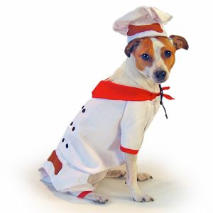Come PetMarking Challenge: Halloween Costumes For Pets