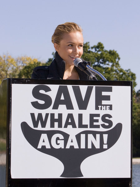 Hayden Panettiere Speaks at a campaign for ''Save The Whales Again!'' in Washington