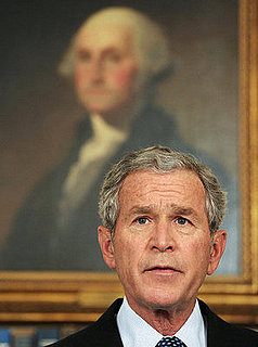 I Love You George W Bush. . . Says 28% of US. Do You?