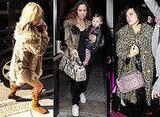 Kate Moss, Lily Allen, Myleene Klass, Leopard Print, Coat