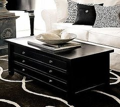 The Map Coffee Table is very sleek and modern.