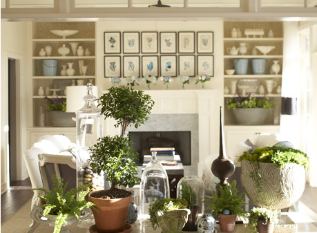 Abundant plant life adds lovely contrast to the collections of white pottery on the living room shelves.