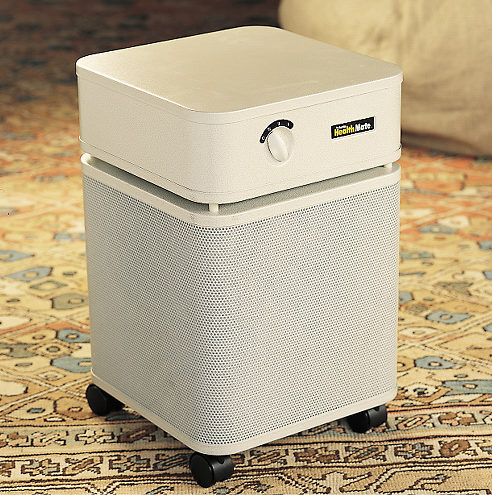 Do You Have an Air Purifier?