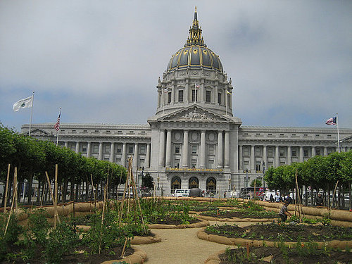Cool Idea: San Francisco's Urban Farm