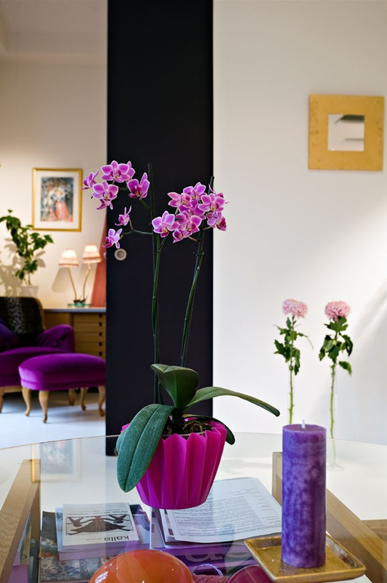 Purple is the rule, not the exception, in this little velvet vignette.