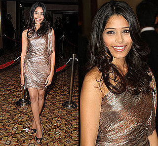Freida Pinto in Zac Posen Metallic Dress at 61st Annual Directors Guild Awards