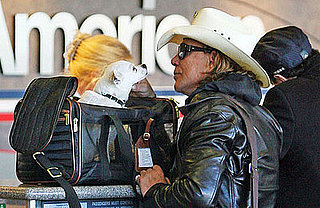 Sugar Shout Out: Mickey Rourke's Got a New Traveling Mate!