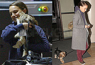 Photos of Natalie Portman at LAX With Dog Charlie