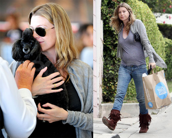 Ellen Shows off Her Bump, Dog