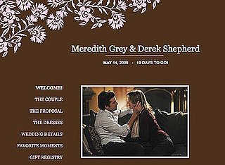 Meredith and Derek's Wedding Website on The Knot for Grey's Anatomy