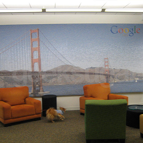 Ten Reasons Why I Love Google's San Francisco Office