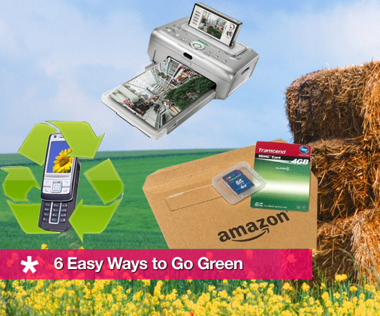 Six Easy Ways to Go Green