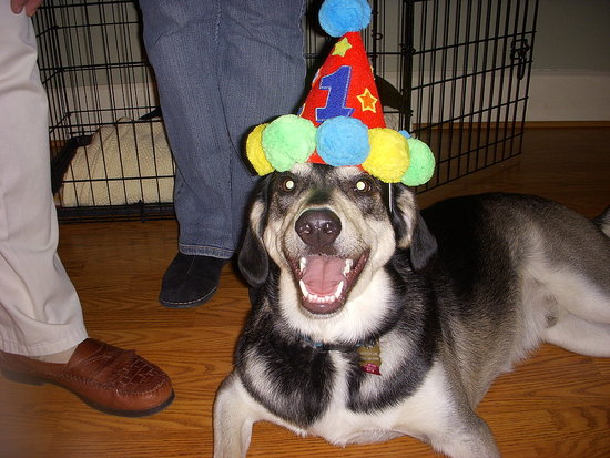 Happy First Birthday Patterson!