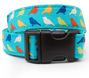 Bright Bird Dog Collar ($40)