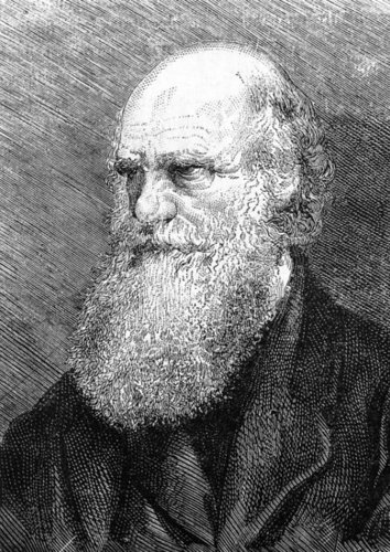 Happy Birthday Darwin — Do You Believe in Evolution?
