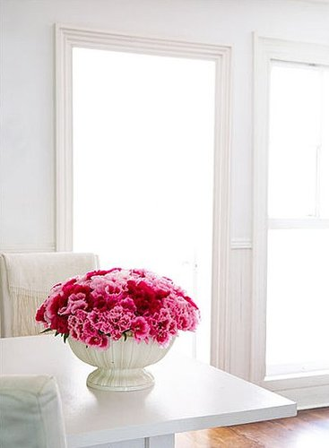 How-To: Help Carnations Make a Comeback
