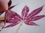 Love Spring leaves? Build/Make/Craft/Bake has a way to preserve Spring leaves with hammered prints.
