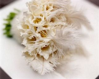 This elegant white bouquet's flowers are augmented with ostrich flowers. Source