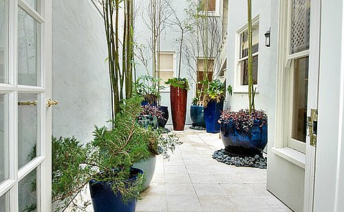 How-To: Create a Simple and Elegant Patio Garden