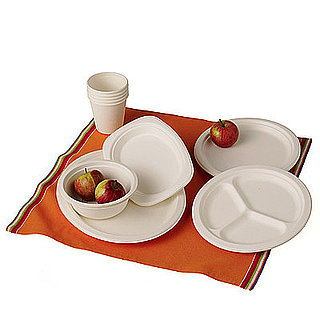 Guess What This Picnic Set Is Made From?