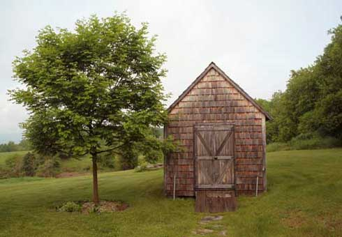 Can You Guess Who Inspired This Cabin?
