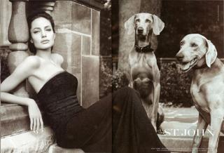 Angelina Goes To The Dogs For St. John