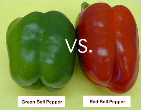 Red Pepper vs. Green Pepper