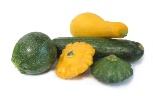 It's Summer Squash Time!