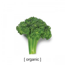 94abiwell_tshirts_organic
