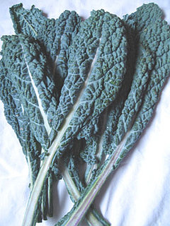 Crazy for Dino Kale