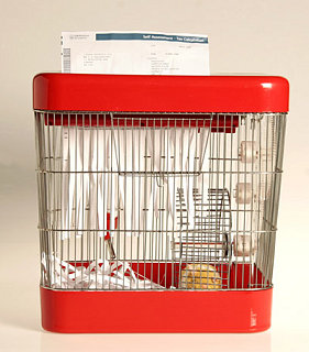 Product of the Day: Hamster Powered Paper Shredder