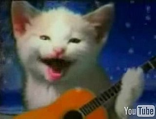 Cats Perform Your Fave Christmas Melodies