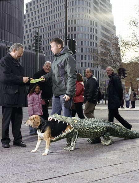 dog-costume-001
