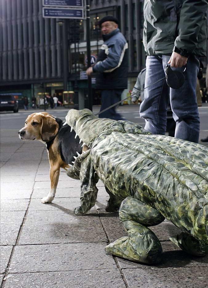 dog-costume-002-1