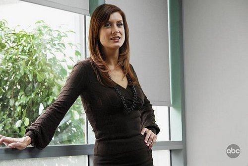 """Private Practice"": Episode 1, ""In Which We Meet Addison, a Nice Girl from Somewhere Else"""