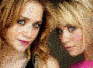 How To Turn A Pic Into A Beautiful Image Mosaic
