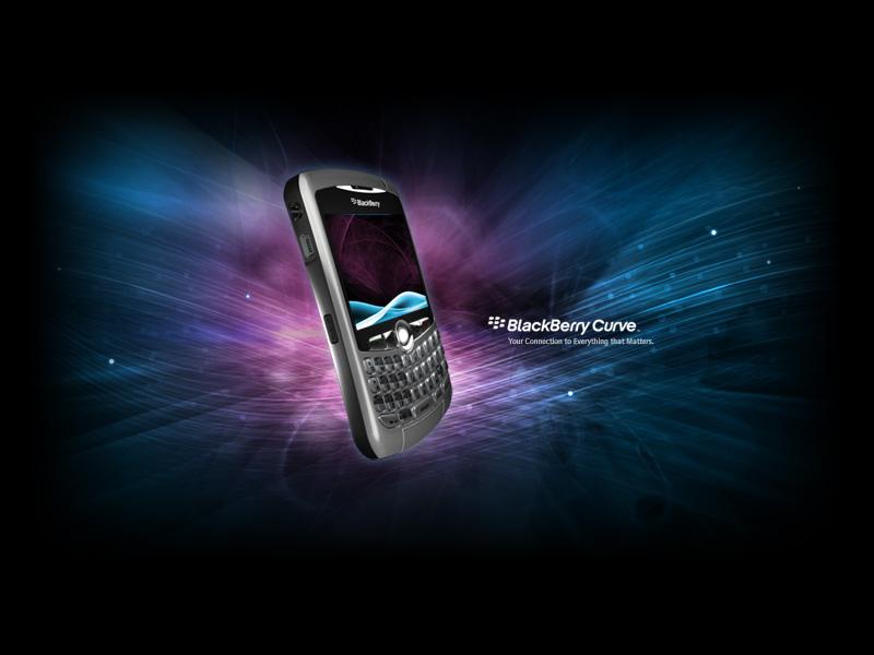 blackberry_curve2-1