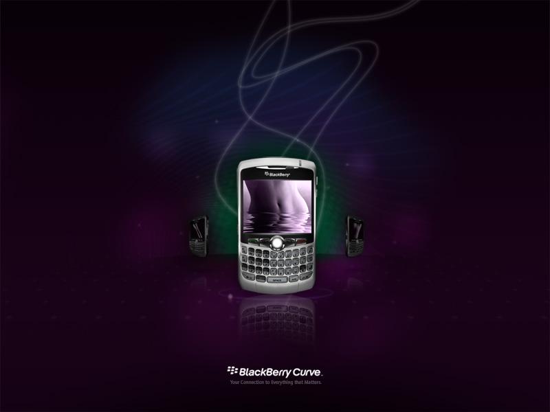 blackberry_curve