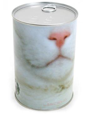 cat-camera2
